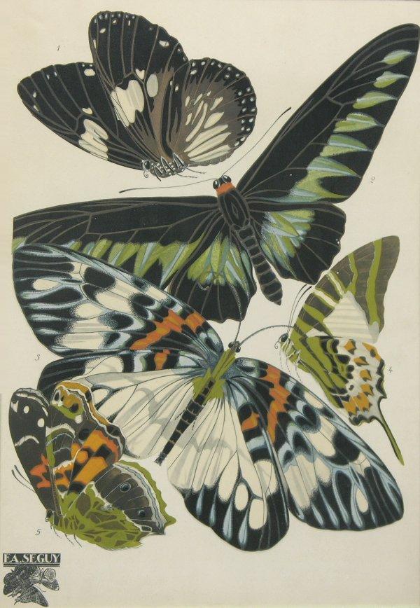 Art Nouveau Papillons Print From Eugene Alain Seguy Paris